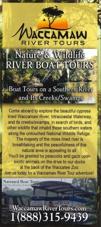 Waccamaw River Tours