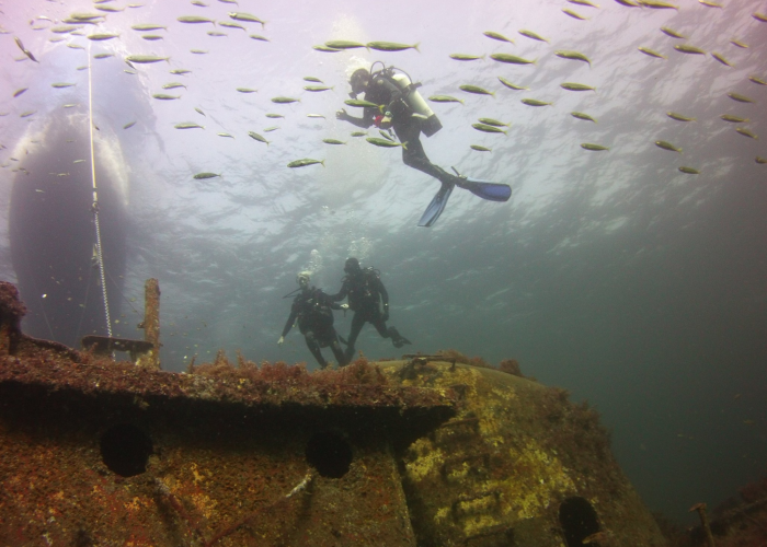 group scuba diving tour with Coastal Scuba