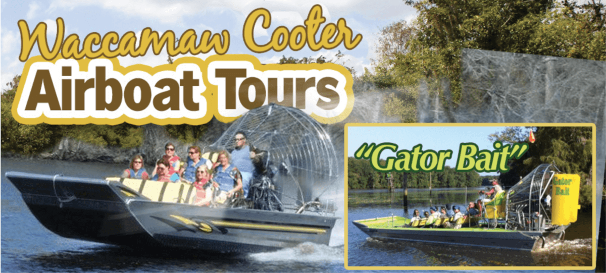 Waccamaw Cooter Airboat Tour