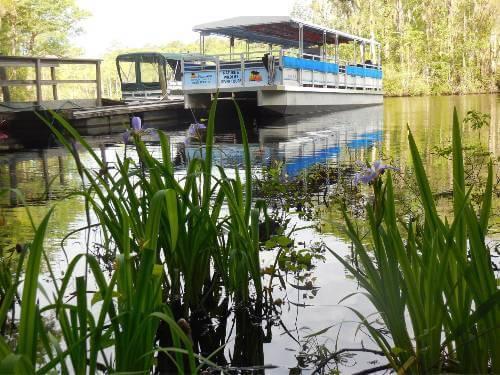 Waccamaw River Tours - Myrtle Beach, SC