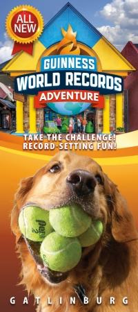 Guinness World Records Adventure