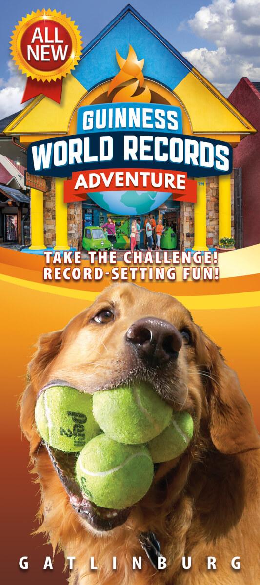 Guinness World Records Adventure Brochure Image