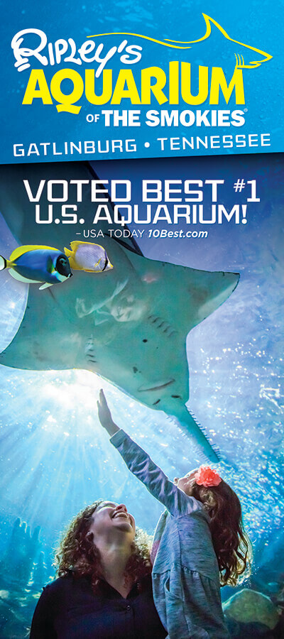 Ripley's Aquarium of the Smokies Brochure Image