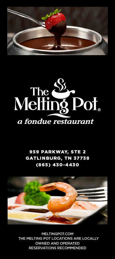 The Melting Pot Brochure Image