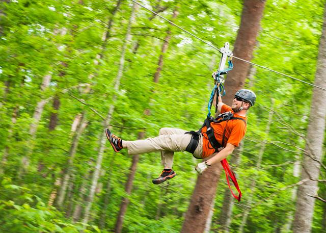 Foxfire Mountain Zip Lines Through Green Trees