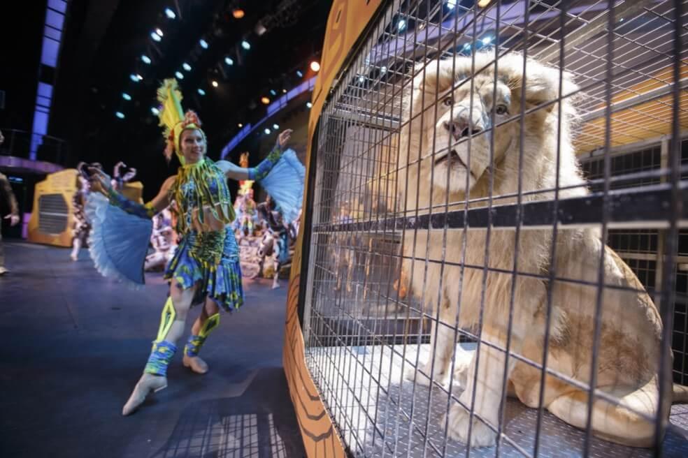 Smoky Mountain Opry 2015 Show with White Lion