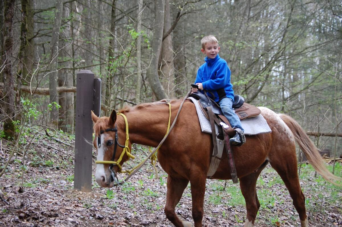 Smoky Mountain Riding Stables Boy Rider