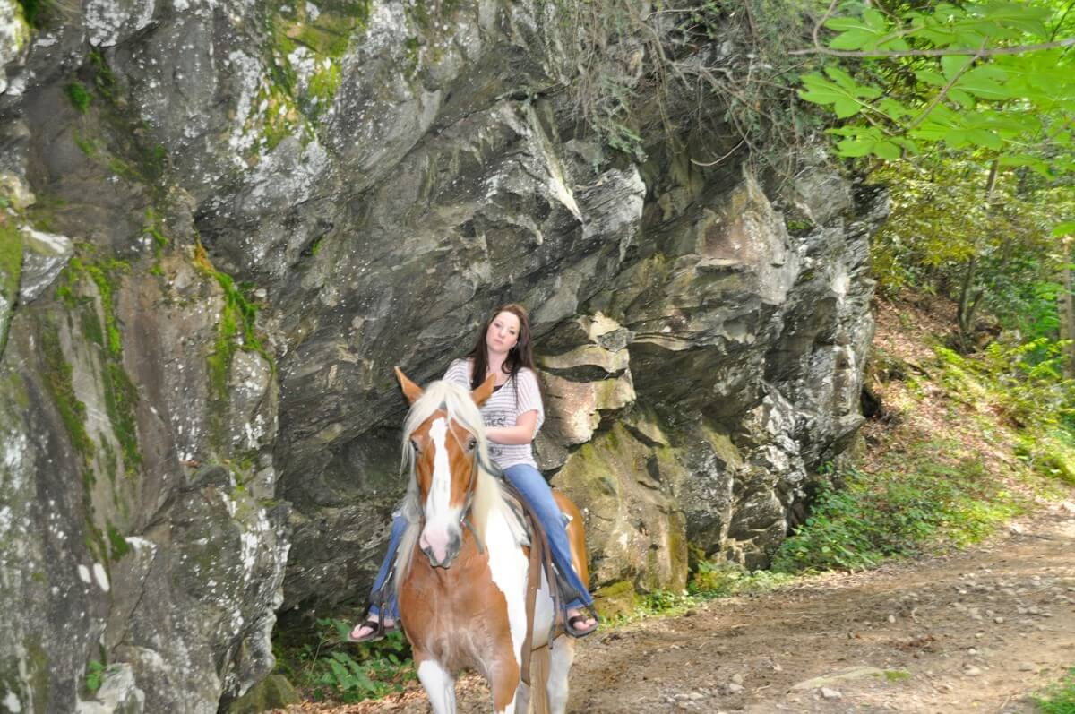 Smoky Mountain Riding Stables Cliffside