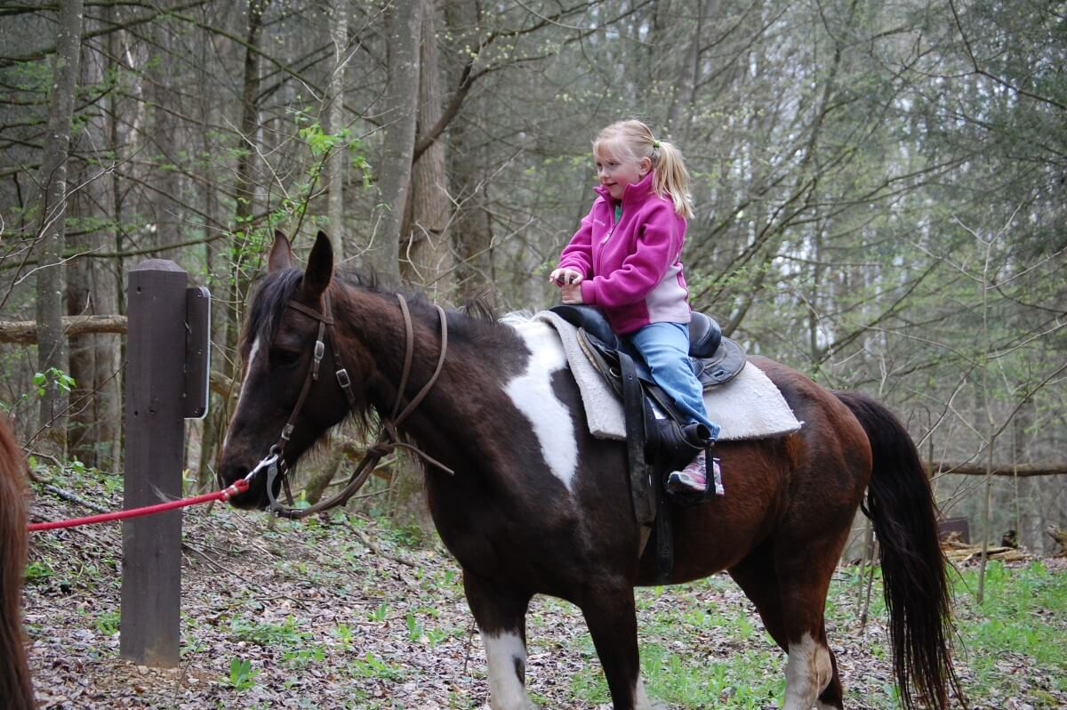 Smoky Mountain Riding Stables Girl Riding