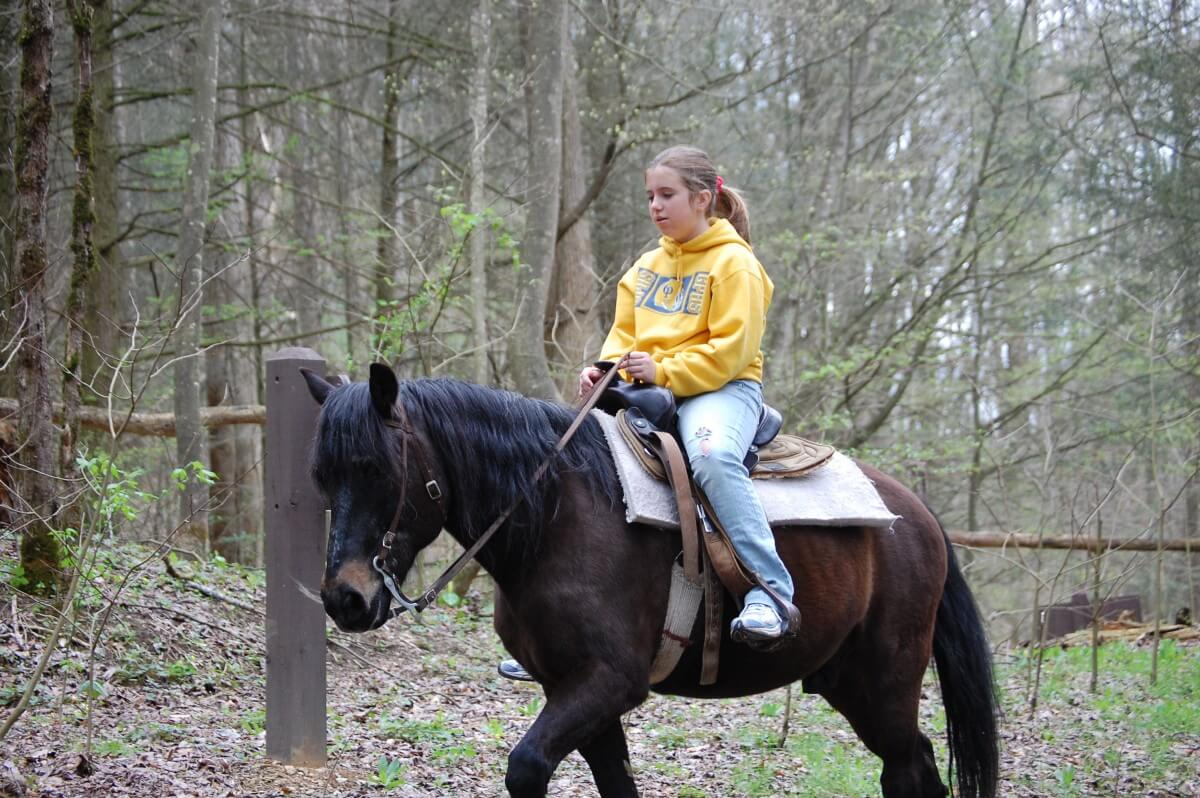 Sugarlands Riding Stables Yellow Shirt Girl