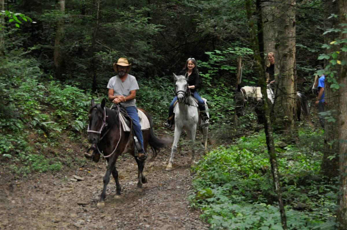 Sugarlands Riding Stables Riding in Forest Group