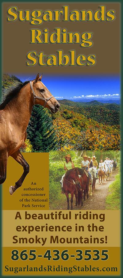 Smoky mountain horseback riding