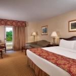 Music Road Resort Inn King Bed Room