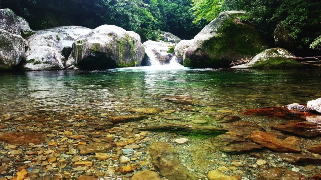 Guided Hikes with Smoky Mountain Outdoors
