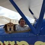 Sky-High-Man-Dog