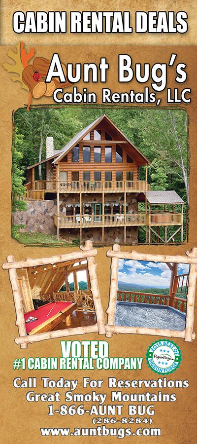 Aunt Bug's Cabin Rentals Brochure Image