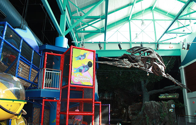 Playground at Ripley's Aquarium of the Smokies