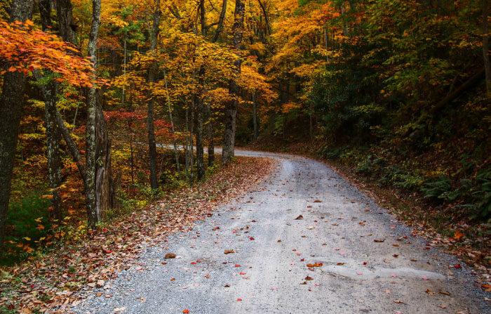 Rich Mountain Road, TN