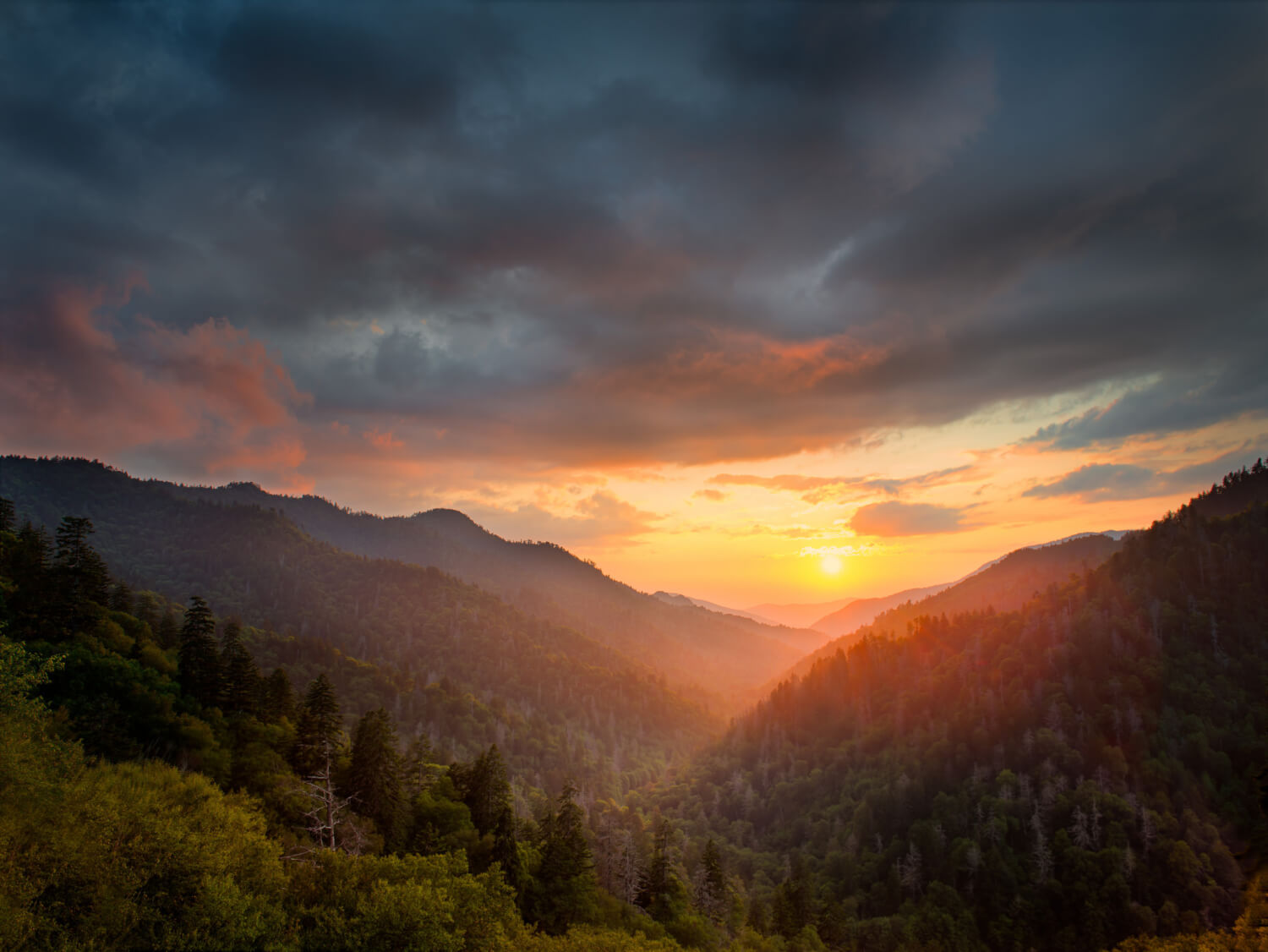 Smokies Sunrise - Alistair Nicol