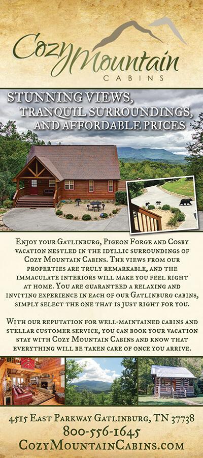Cozy Mountain Cabins Brochure Image
