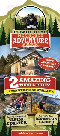 Rowdy Bear Mountain Alpine Coaster
