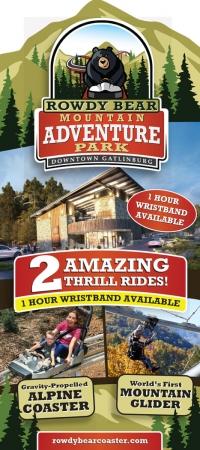 Rowdy Bear Mountain Alpine Coaster