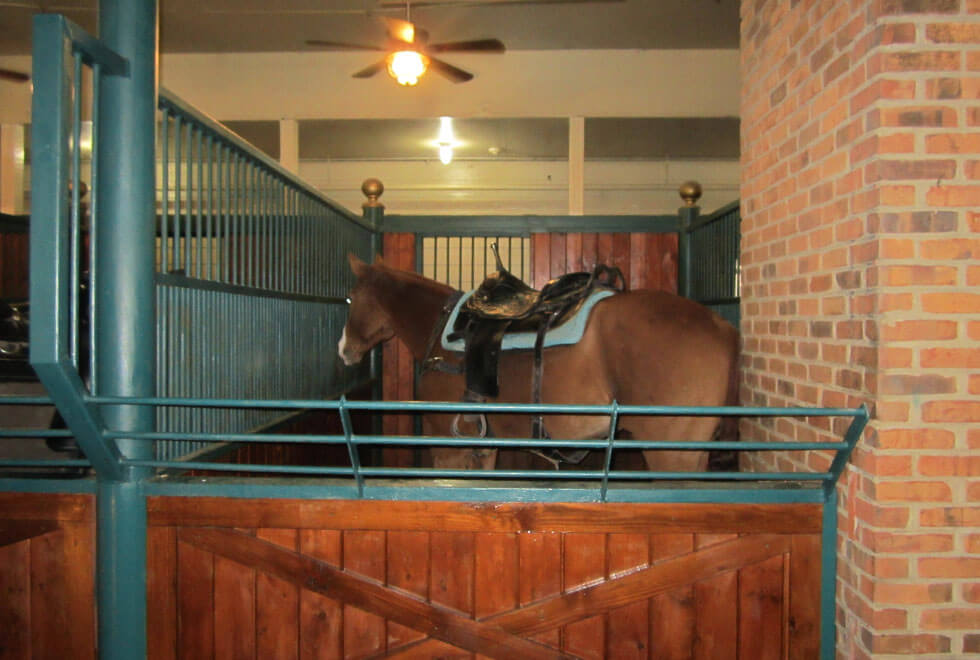 Dixie Stampede Stables