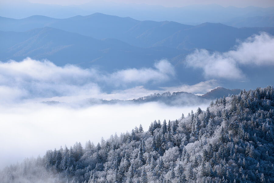 Smokies in Winter