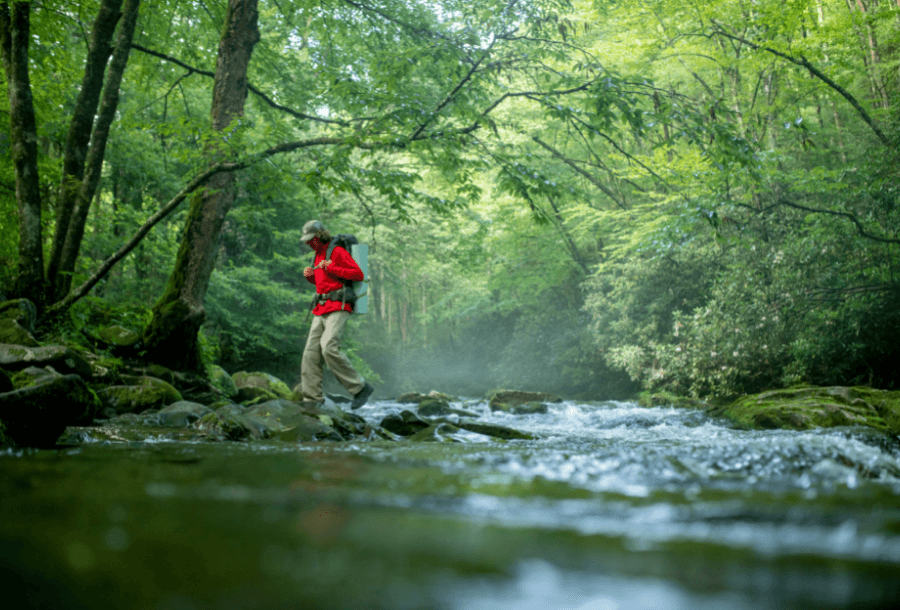 hikes in great smoky mountains