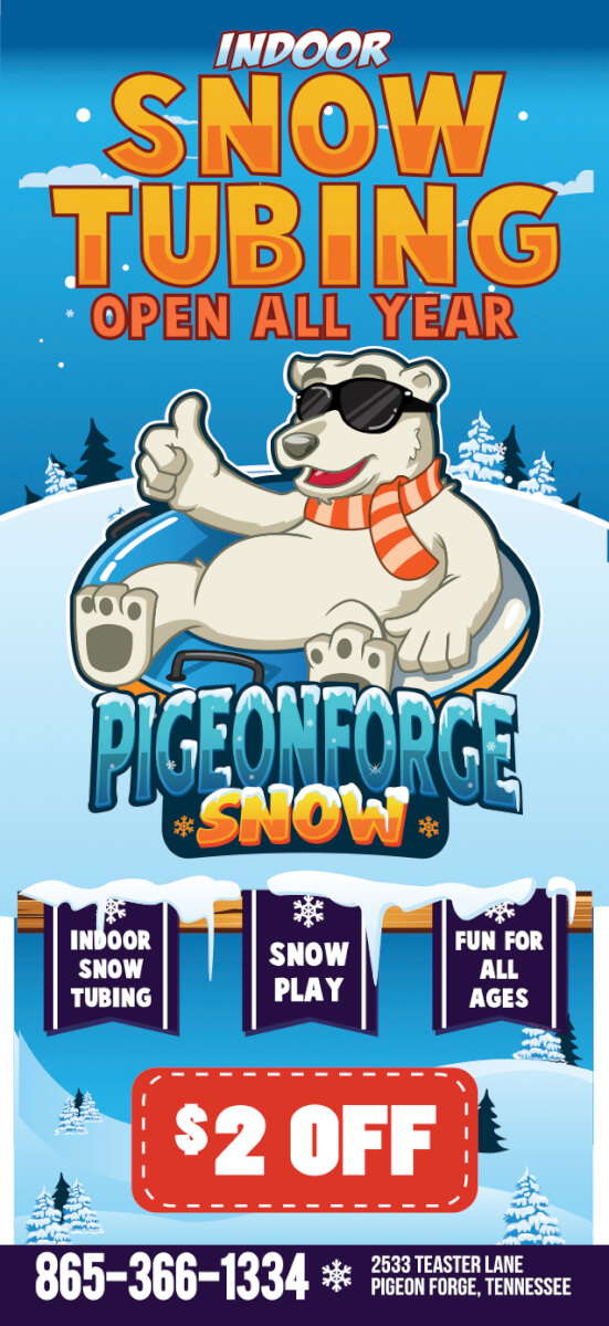 Pigeon Forge Snow Brochure Image