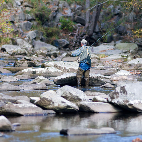 Fishing in the Great Smoky Mountains National Park