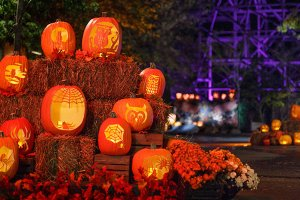 Fall Festivities in the Smoky Mountains in 2018
