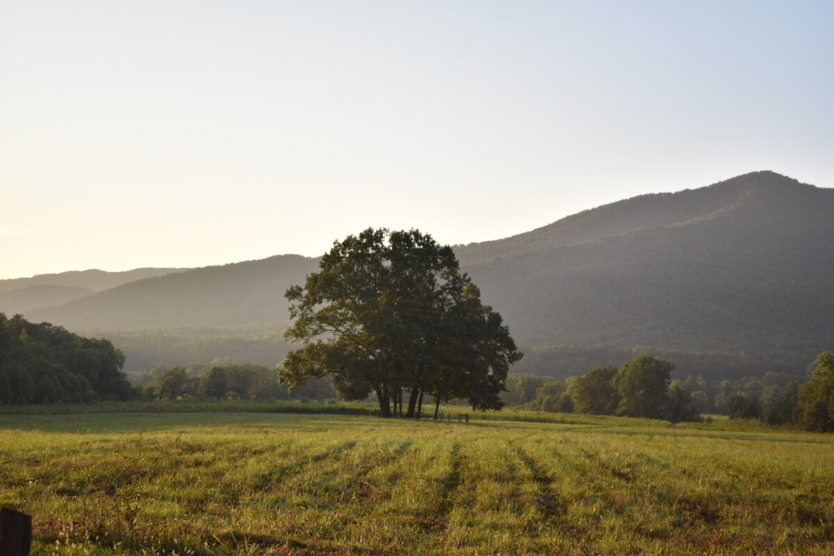 Sunsetting in a misty Cades Cove, Tennessee