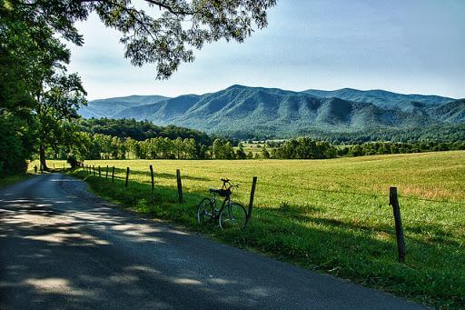 Things to do in Pigeon Forge for nature lovers - Cades Cove Loop