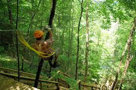 Smoky Mountain Ziplines of Pigeon Forge, TN