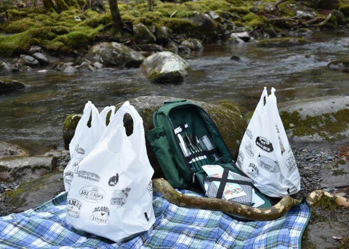 Have a Picnic in the Great Smoky Mountains