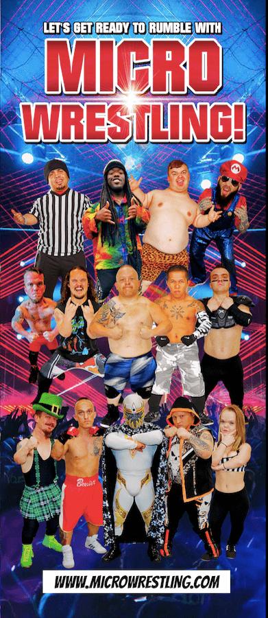 Micro Wrestling Federation Brochure Image