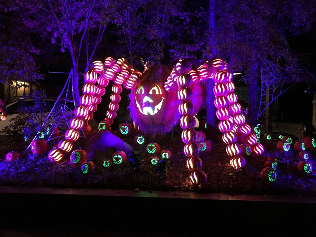 pumpkin at Dollywood Harvest Festvial and LumiNights