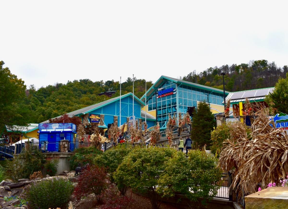 gatlinburg aquarium coupon 2019