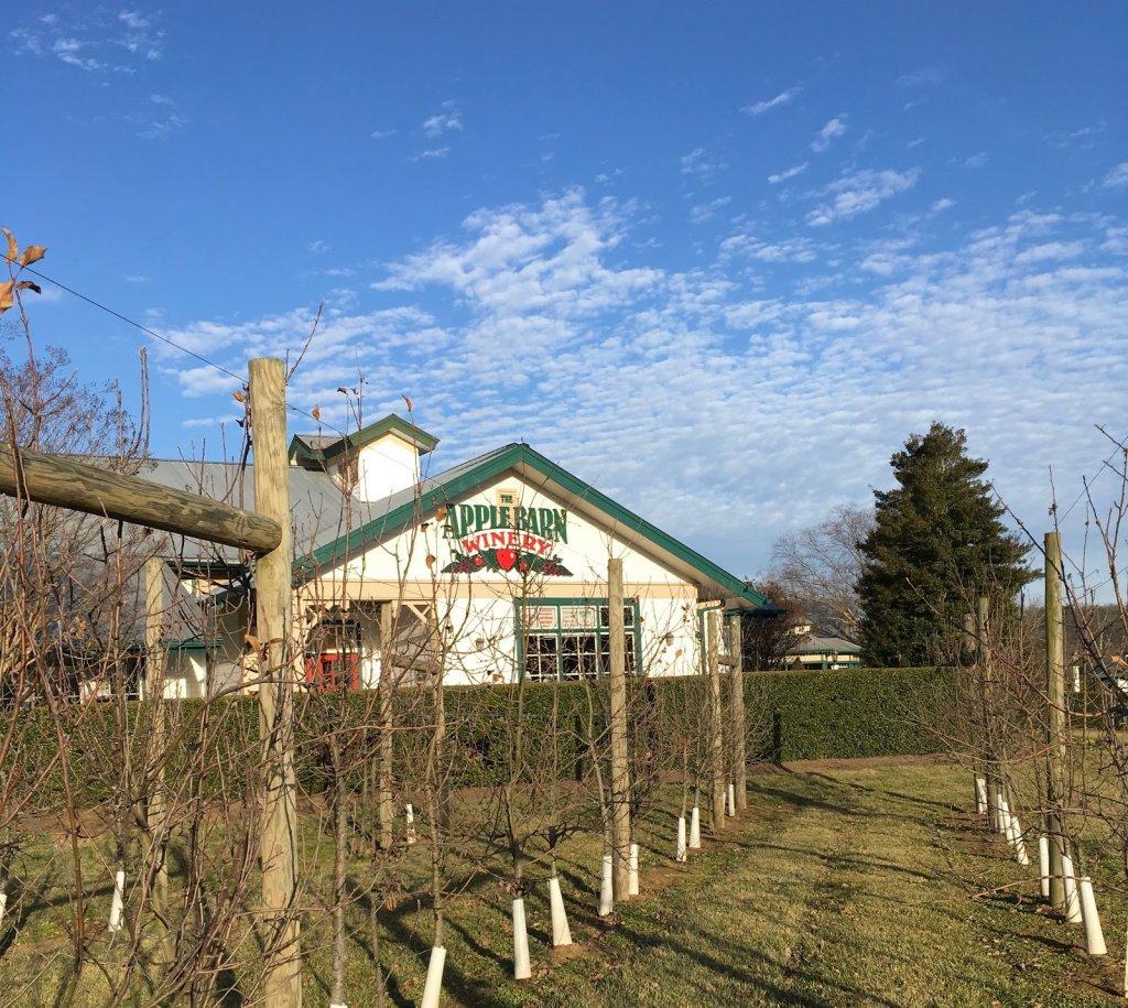 apple barn winery in sevierville tn