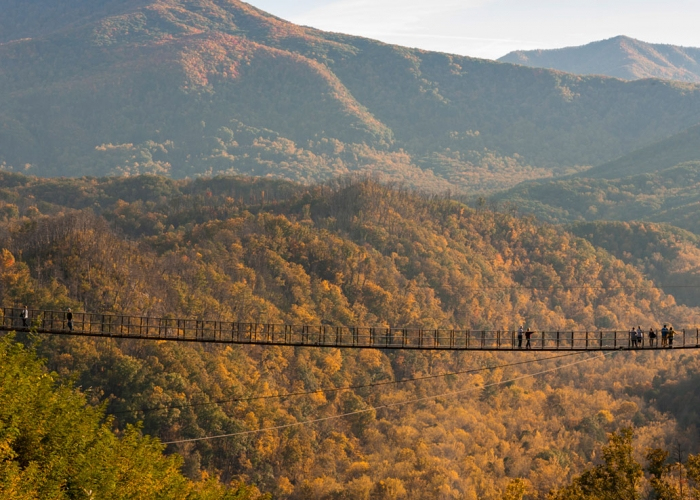 Fall Time Activities in the Smoky Mountains