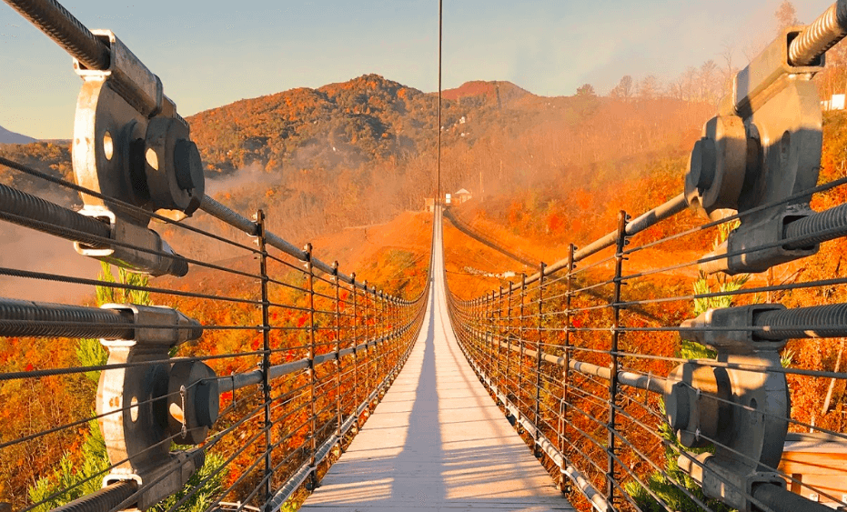 Gatlinburg SkyLift Park's suspension bridge over autumn leaves