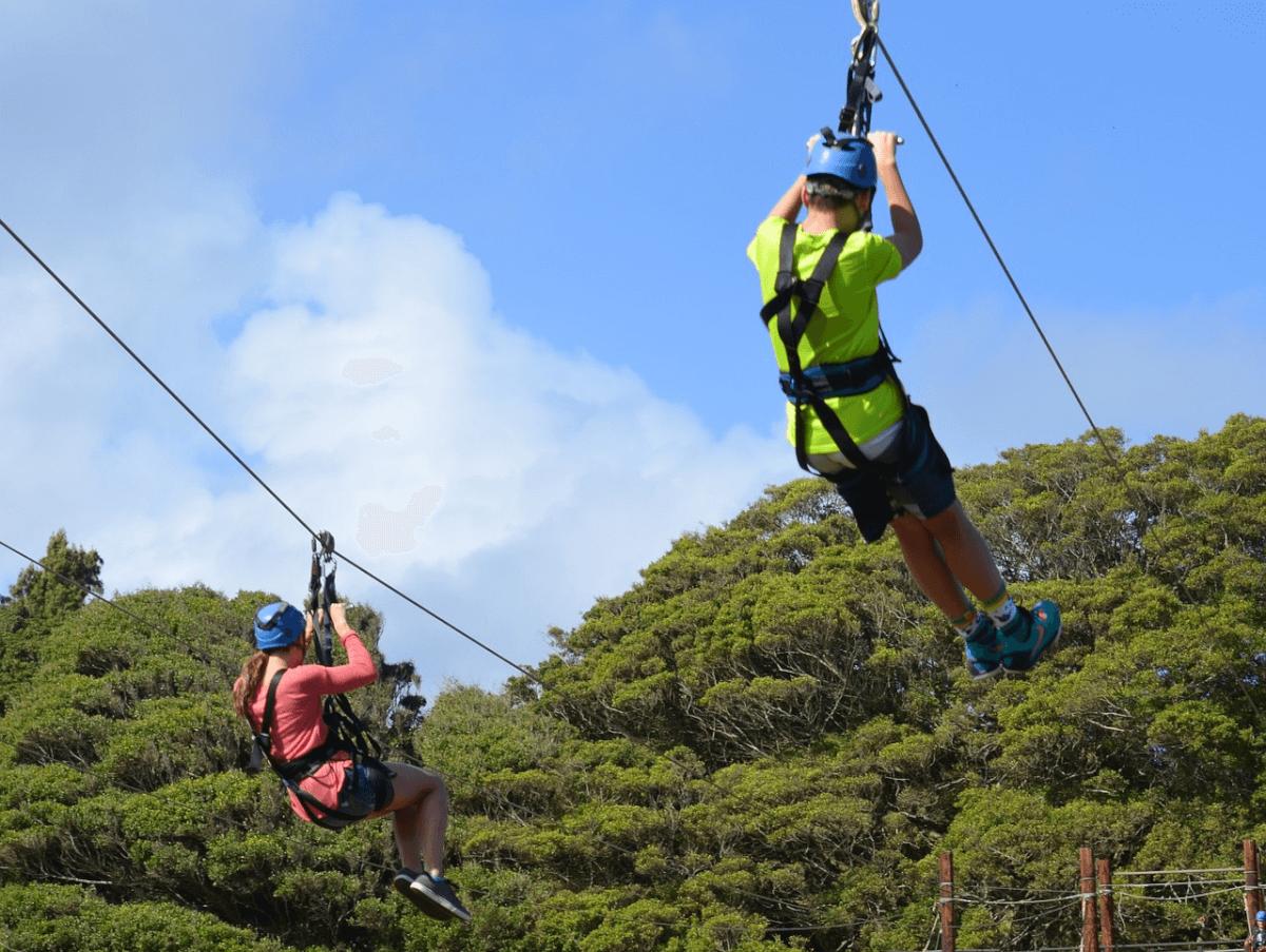 ziplining at Adventure Park Five Oaks